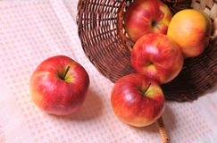 Apples and Basket Stock Photography