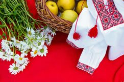 Chamomile apples and embroidery. Apples in the basket. chamomile white. embroidery. on a red plaid Stock Photography