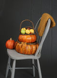 Apples in Basket, Fall or Thanksgiving Theme Stock Image
