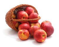 Apples in a basket. On white background royalty free stock images