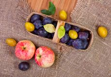 Apples and basket with plums Stock Image