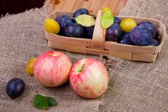 Apples and basket with plums Royalty Free Stock Photography