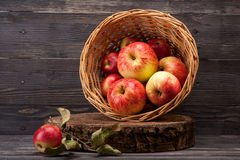Apples in basket. Red apples in basket on wooden textured board Stock Photography
