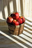 Apples and basket in shadowed sunlight Stock Photography