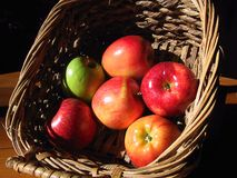 Apples in Basket. Apples in a wicker basket Royalty Free Stock Photos