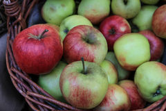 Apples in a basket. Apples in a wicker basket Royalty Free Stock Photos