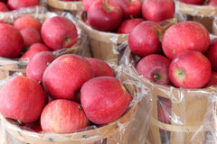Apples in baskets. Baskets of fall red apples ripe for buying Stock Photos