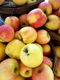 Apples in baskets at Market 4k. Apples in baskets at farmers market Royalty Free Stock Images