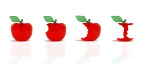 Apples being eaten Royalty Free Stock Photography
