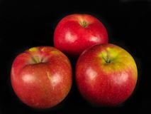 Apples on a Black Backdrop Stock Images