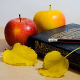 Apples and book Royalty Free Stock Photo