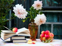 Apples and Books. Georginas , Apples and Books on table outside Stock Image