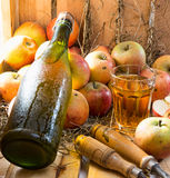 Apples and a bottle and glass of cider Royalty Free Stock Photo