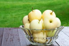 Apples in Bowl  Stock Photo