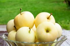 Apples in Bowl  Royalty Free Stock Images