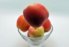 Apples in bowl with one popping up. An apple popping up from a bowl of apples Royalty Free Stock Images