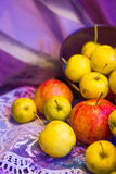 Apples in a bowl Royalty Free Stock Photography