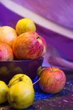 Apples in a bowl Royalty Free Stock Photo