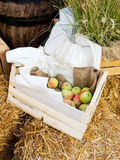 Apples in the box Stock Image