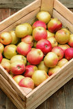 Apples in a box. Royalty Free Stock Image