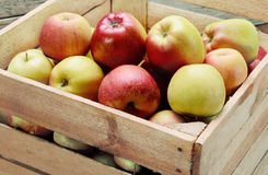 Apples in a box. Royalty Free Stock Photo