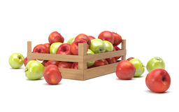Apples in a box Stock Images