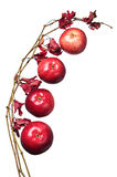 Apples and a branch with autumn leaves Royalty Free Stock Image