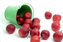 Apples in a bucket 2. Lovely apples rolling out from a green bucket royalty free stock photography