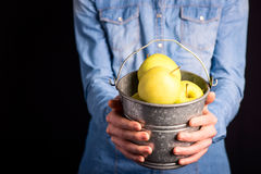 Apples bucket in hands Royalty Free Stock Photos