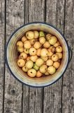 Apples in a bucket on a wooden floor 1. Harvest of ripe apples in an iron bucket on a wooden floor. View from above Stock Images