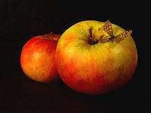 Apples with a butterfly Stock Images