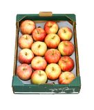 Apples in a cardboard box isolated on white Stock Image