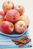Apples with cinnamon Stock Photography