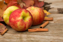 Apples, Cinnamon Sticks and Fall leaves. Apples and cinnamon sticks in Autumn Royalty Free Stock Photography