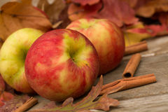 Apples, Cinnamon Sticks and Fall leaves. Apples and cinnamon sticks in Autumn Stock Photography