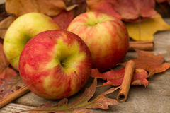 Apples, Cinnamon Sticks and Fall leaves Royalty Free Stock Images