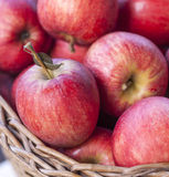 Apples close-up Stock Images