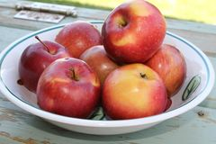 Apples close-up Royalty Free Stock Image