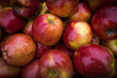 Apples close up at market. Red apples background Royalty Free Stock Images