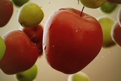 Apples. Royalty Free Stock Image