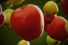 Apples. Royalty Free Stock Photography