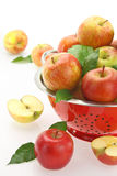 Apples in colander Stock Photography