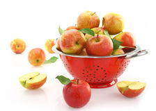Apples in colander Royalty Free Stock Photo