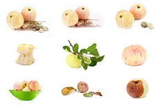 Apples. Collage Royalty Free Stock Photography