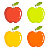 Apples collection Royalty Free Stock Image