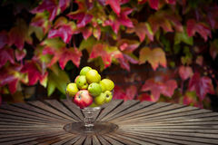 Apples and Colored Leaves Stock Photo