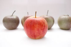 Apples conceptual image. Apples on isolated background Stock Images