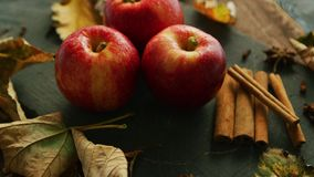 Apples with condiments on table. From above shot of sweet ripe apples with shiny skins composed on table with aromatic spices and fallen leaves stock footage