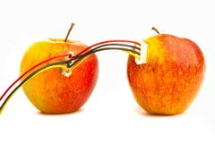 Apples connected Royalty Free Stock Images
