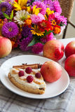 Apples and cottage cheese quiche. Delicious cottage cheese quiche on plate Stock Photos